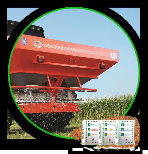 Helga fertilization corn